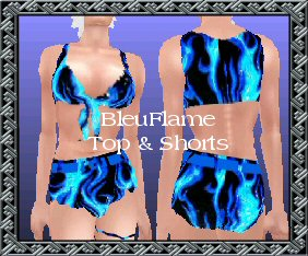 bleuflame_top_and_shorts.jpg